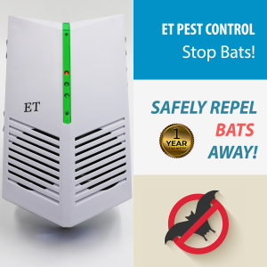 Bat Repeller | Bat Control | 100% Safe | ET Pest Control